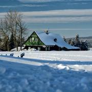 Zima v Jizerkách, autor: Hana Palečková